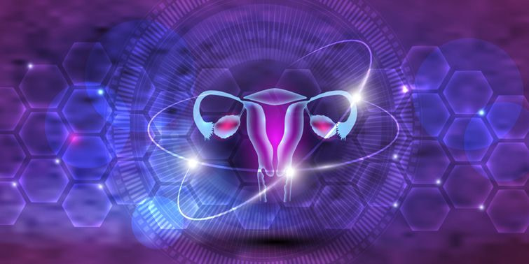 Ovarian Cysts Types, Causes, Symptoms And Treatment