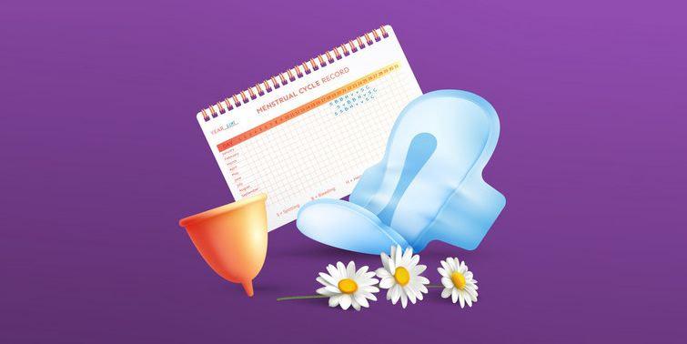 Menstrual Hygiene Sanitary Napkins, Tampons, Menstrual Cups And Cloth Pads