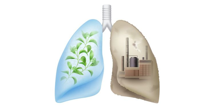 Air Pollution How Air Pollution Is Impairing Yours And Our Health, effects of air pollution, harmful effects of air pollution, increase the chance