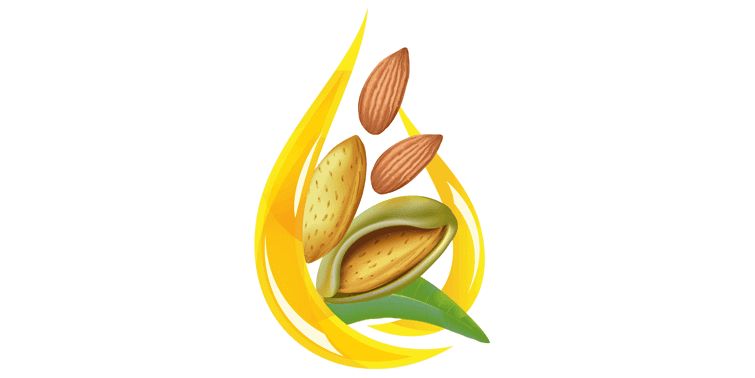 Almond Oil Top 5 Remarkable Almond Oil Health And Nutritional Advantages
