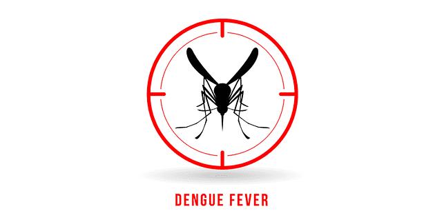 Dengue Fever Infects La Fte De >> Dengue Fever Monsoon Monster Causes Signs Symptoms And Treatment