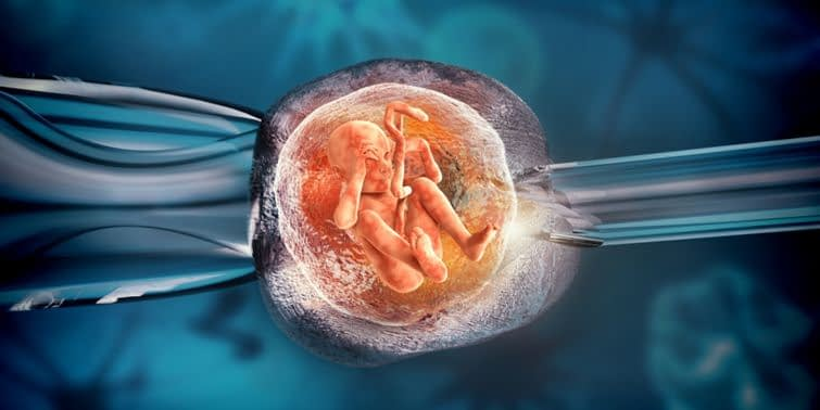 IVF Babies Conceived By In Virto Fertilization (IVF) Have Increased In Birth Weight